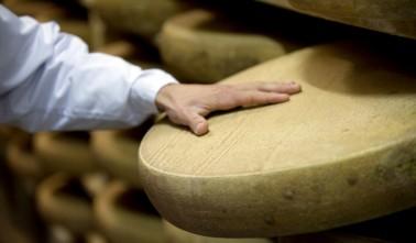Comté Cheese by Marcel Petite