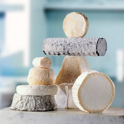 Goat cheese diverse cheeses